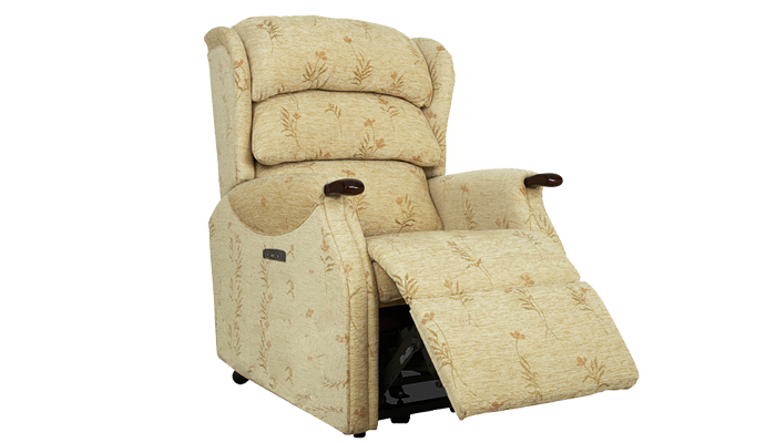 Petite Power Recliner