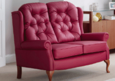 Celebrity Furniture LEATHER Upholstery Types