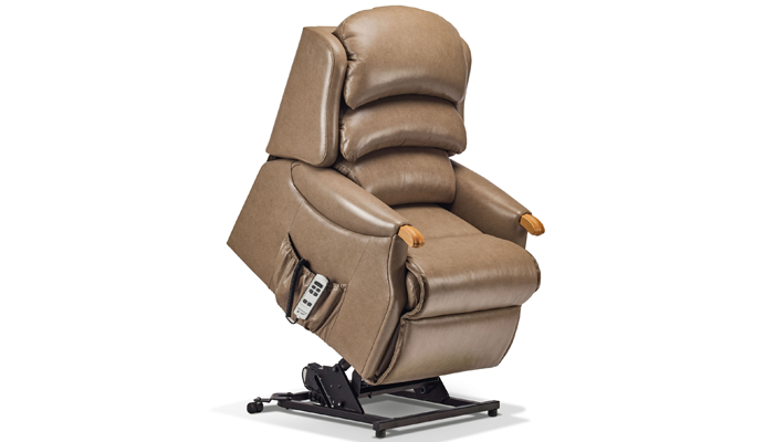 Malham Leather Petite Riser Recliner